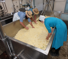 LeRaysville Cheese Factory